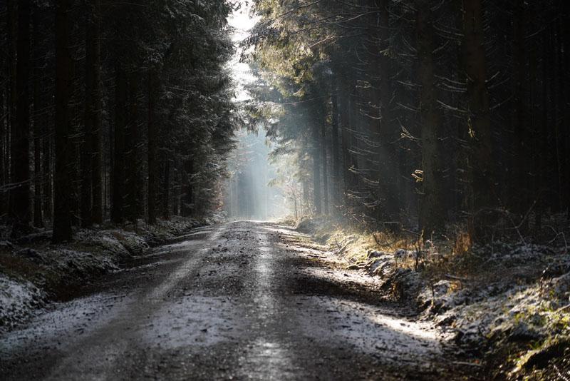 https://staedtepartnerbiberach.de/bilder/winterwanderung2020_02.jpg